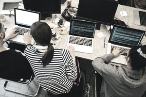 Developers working in office