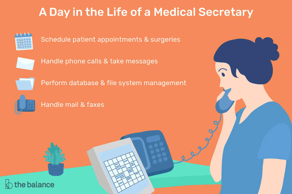 A day in the life of a medical secretary: Schedule patient appointments and surgeries, handle phone calls and take messages, perform database and file system management, handle mail and faxes