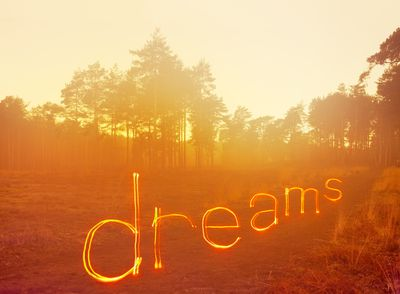 Dreams in forest