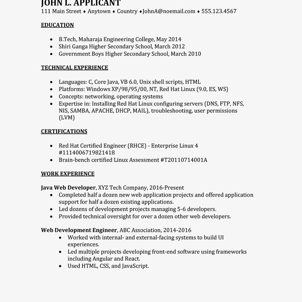 International Information Technology CV Example