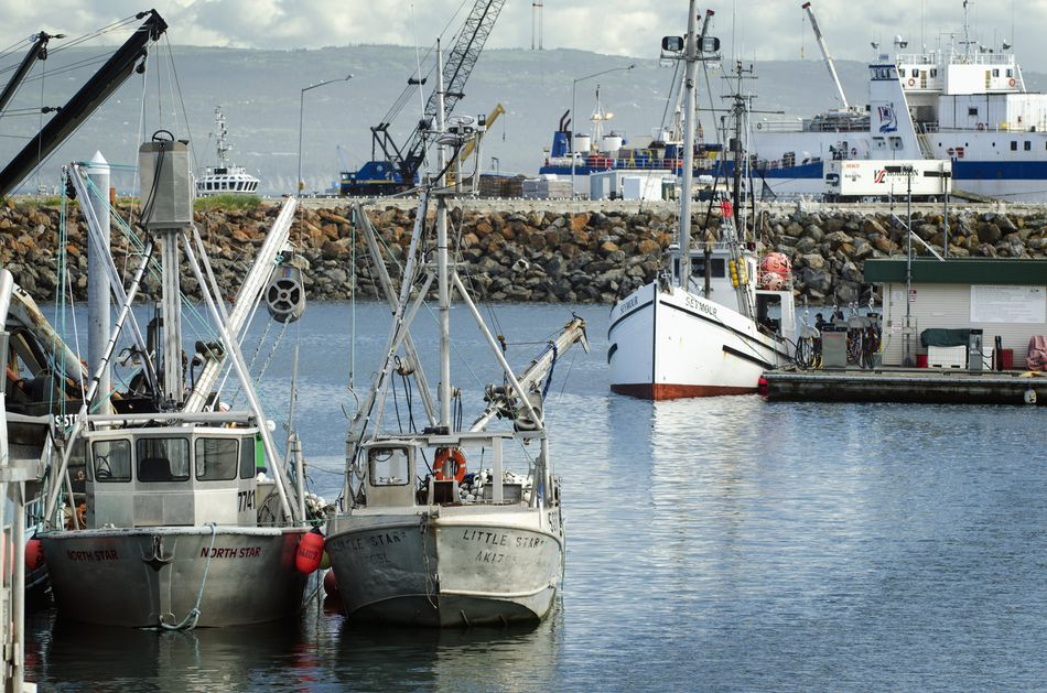 Commercial fishing vessels in the Homer harbor, Southcentral Alaska