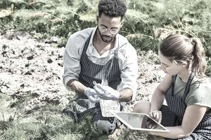 A man and woman are kneeling in a field. The man is collecting field specimens and the woman is looking at a tablet.