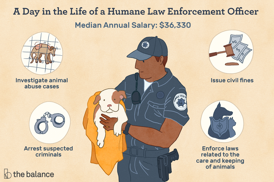 "Image shows a man in uniform holding a puppy. Text reads: ""A day in the life of a human law enforcement officer: investigate animal abuse cases; arrest suspected criminals; issue civil fines; enforce laws related to the care and keeping of animals. Median annual salary: $36,330"""