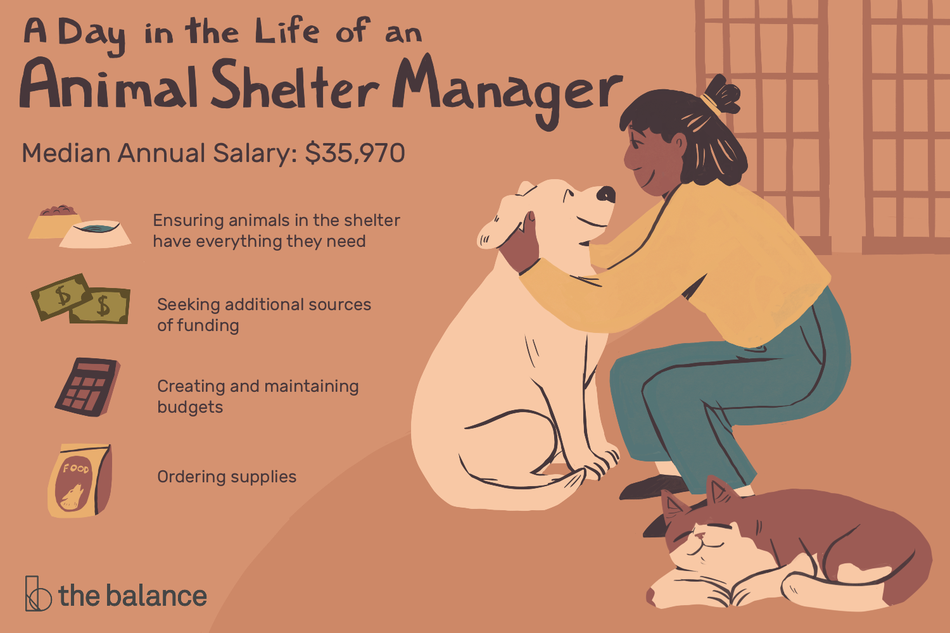 "Image shows a woman squatting on the ground scratching a dog's ears. There is a cat asleep beside her. Text reads: ""A day in the life of an animal shelter manager. Median annual salary: $35,970, ensuring animal sin the shleter have everything they need, seeking additional sources of funding, creating and maintaining budgets, ordering supplies"""