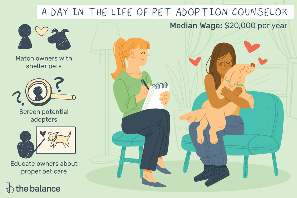 A Day in the Life of a Pet Adoption Counselor