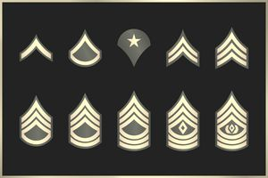 settings Military Ranks Stripes and Chevrons. Vector Set Army Insignia