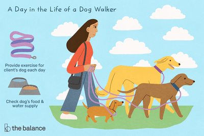 A day in the life of a dog walker: Provide exercise for client's dog each day, check dog's food and water supply