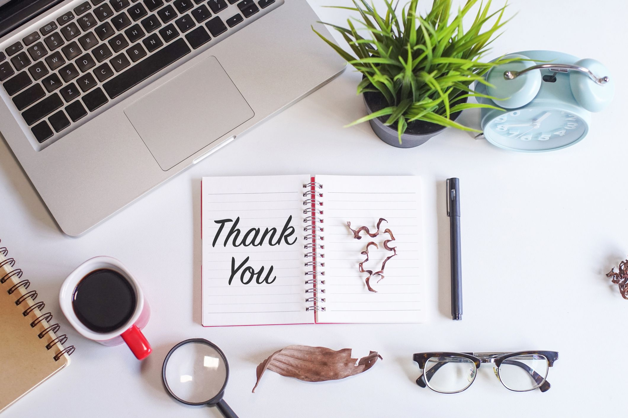 Thank You Email After Job Interview Examples