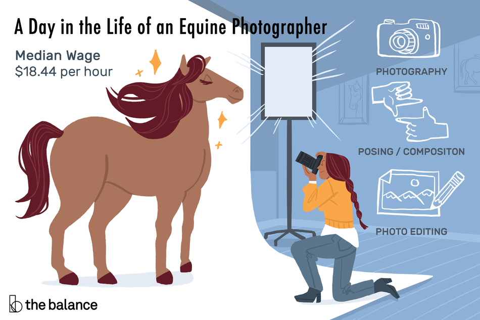 A Day in the Life of an Equine Photographer