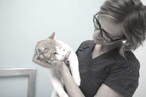 Veterinary technician holding and smiling at cat