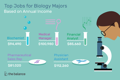 """Image shows a biologist looking into a microscope. Text reads: """"Top jobs for biology majors based on annual income: Physician assistant: $108,610. Medical manager: $99,730. Biochemist: $93,280. Financial analyst: $85,660. Pharmaceutical sales rep: $79,680"""""""