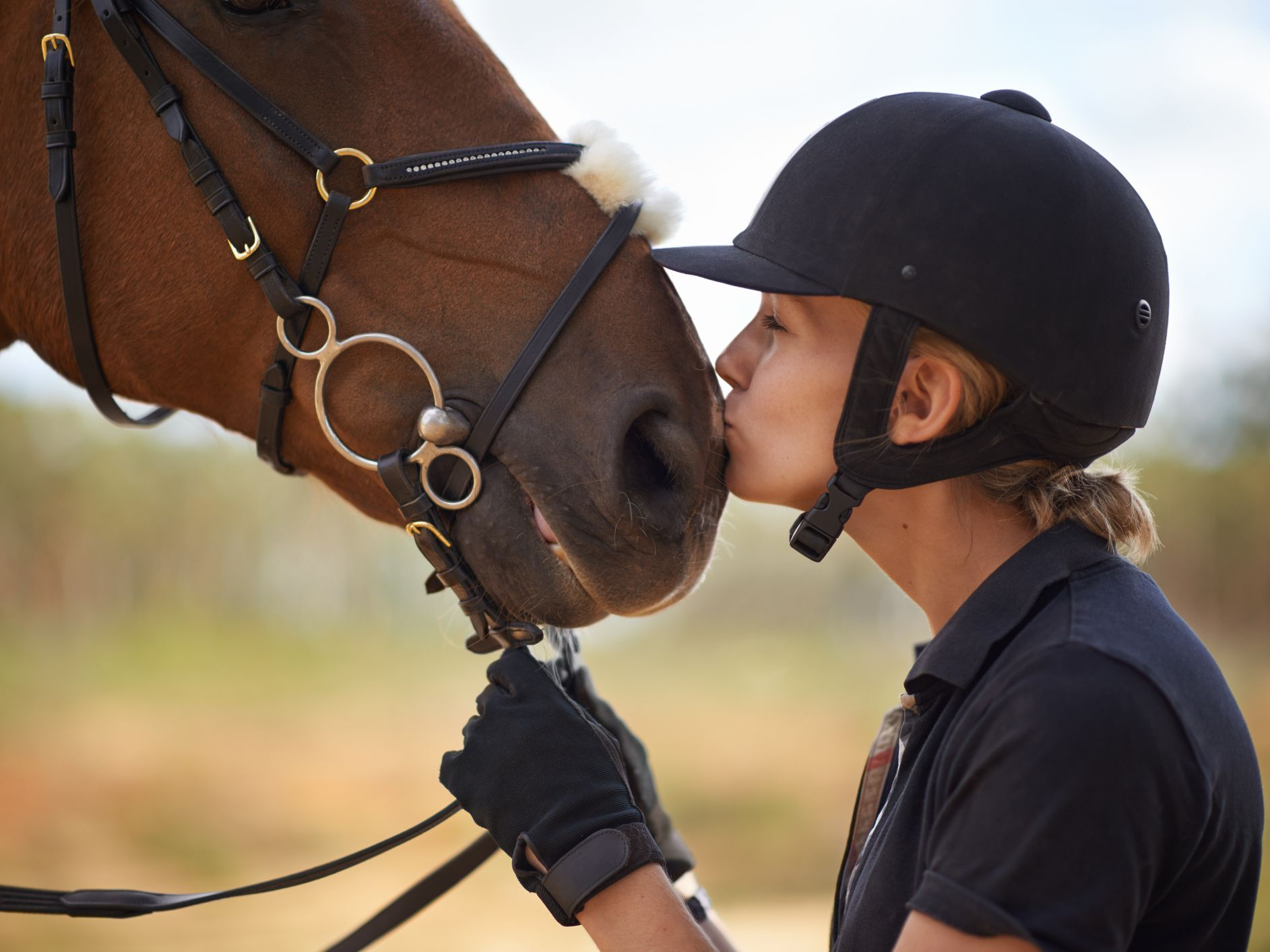 Guide To Equine Career Opportunities