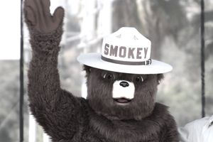 Smokey Bear became a household name thanks to a long-running public service announcement campaign designed to fight forest fires.
