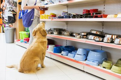Dog and his owner in pet store buying new bowl