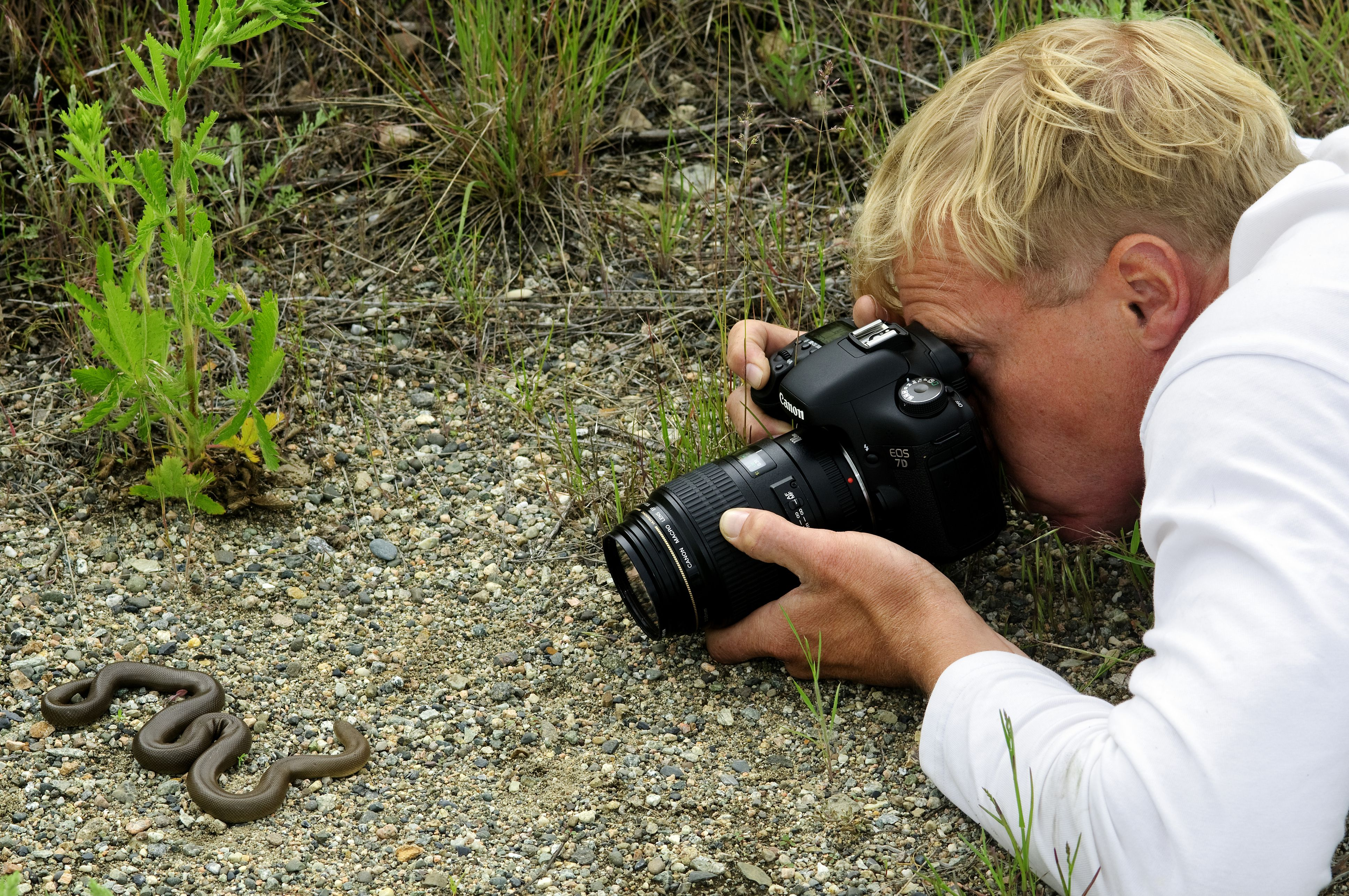 career profile of wildlife biologists
