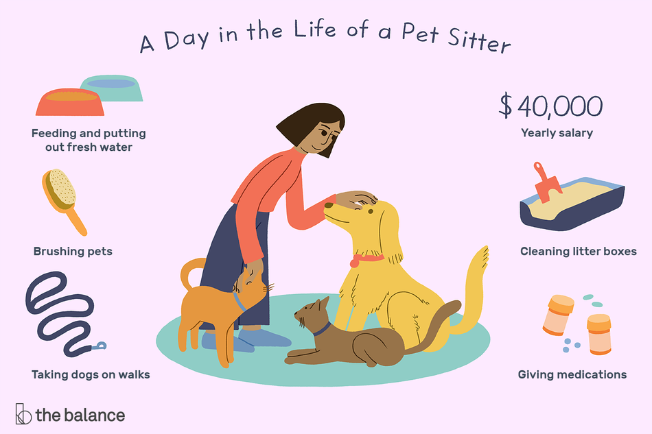 A Day in the Life of a Pet Sitter