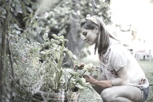 A woman working with landscaping plants