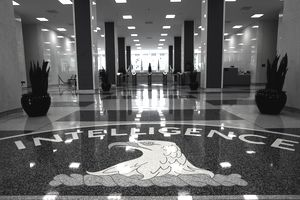 Internships with the Central Intelligence Agency (CIA)