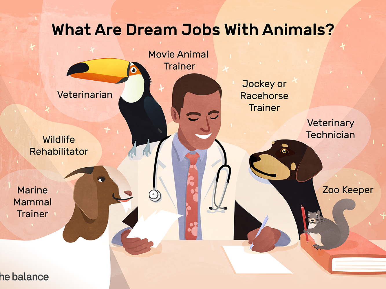 Find a Job Working With Animals