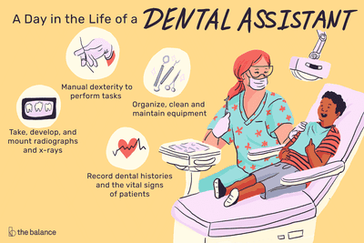A day in the life of a dental assistant: Manual dexterity to perform tasks, Organize, clean, and maintain equipment, Take, develop, and mount radiographs and x-rays, Record dental histories and the vital signs of patients
