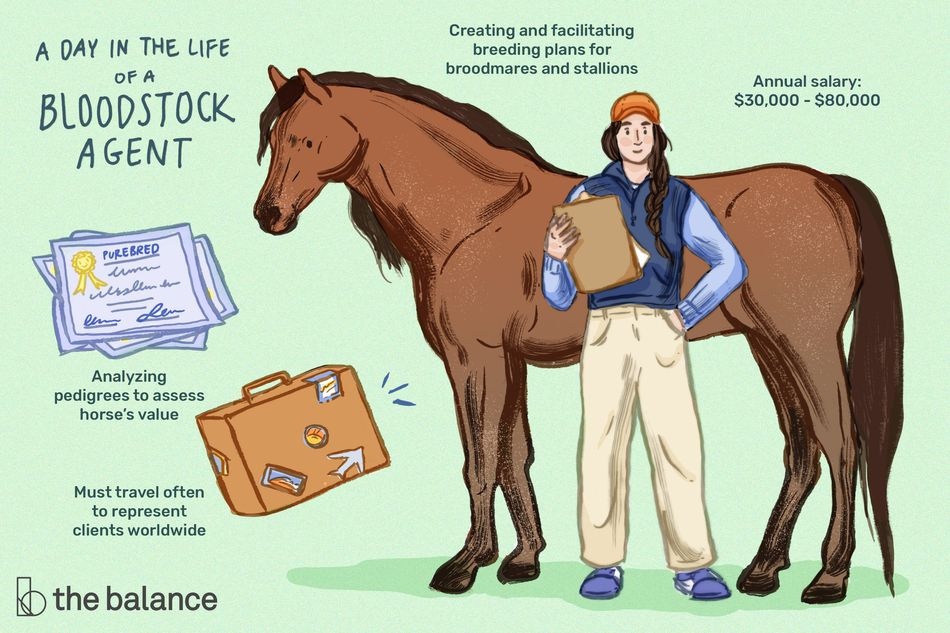"Image shows a woman standing in front of a horse holding a clipboard. Text reads: ""A day in the life of a bloodstock agent: analyzing pedigrees to assess horse's value; must travel often to represent clients worldwide; creating and facilitating breeding plans for broodmares and stallions; annual salary: $30,000-$80,000"""
