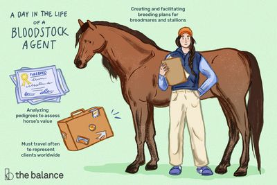 A day in the life of a bloodstock agent: Creating and facilitating breeding plans for broodmares and stallions; analyzing pedigrees to assess horse's value; must travel often to represent clients worldwide