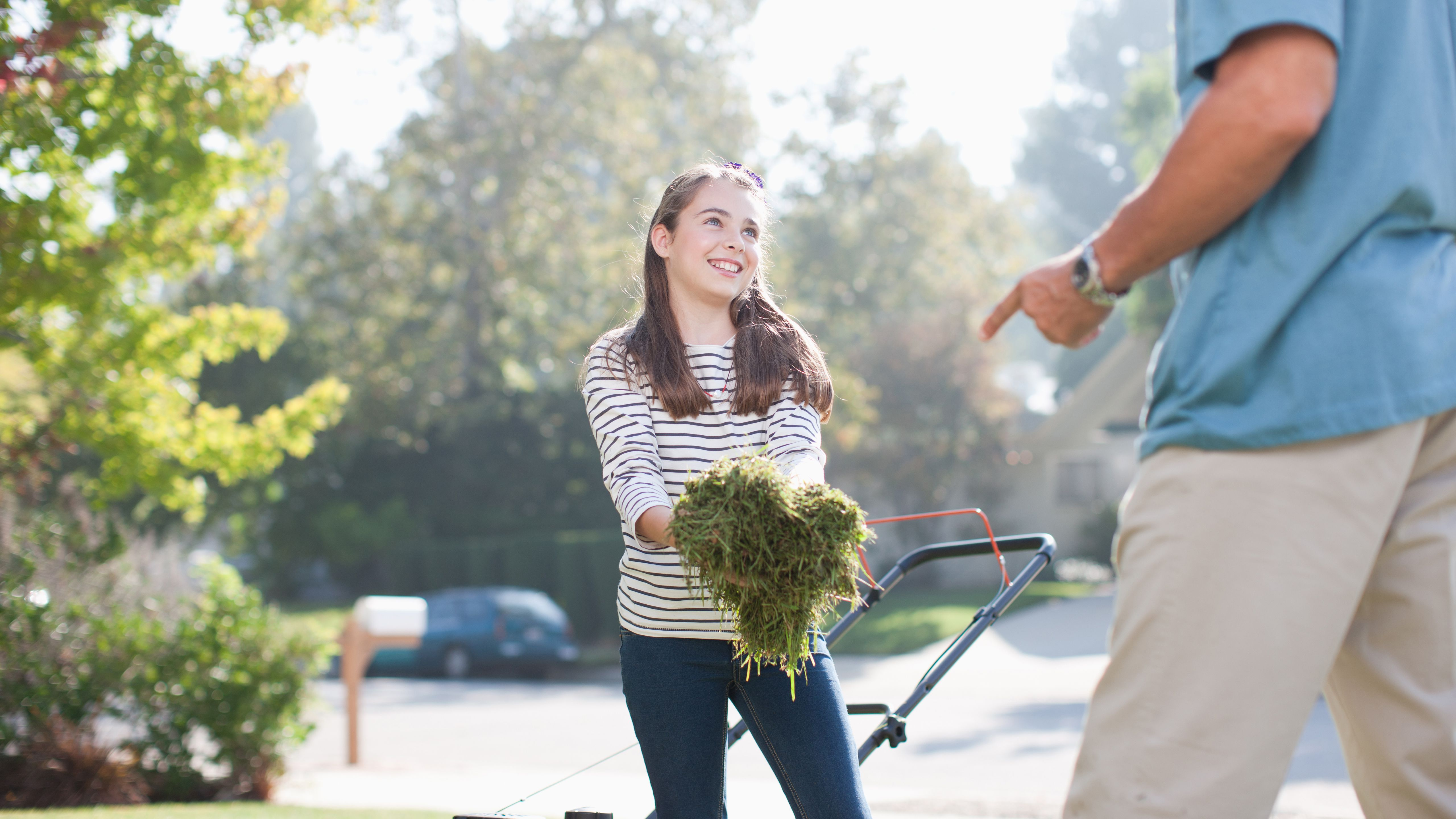The Pros And Cons Of S Mowing Lawns