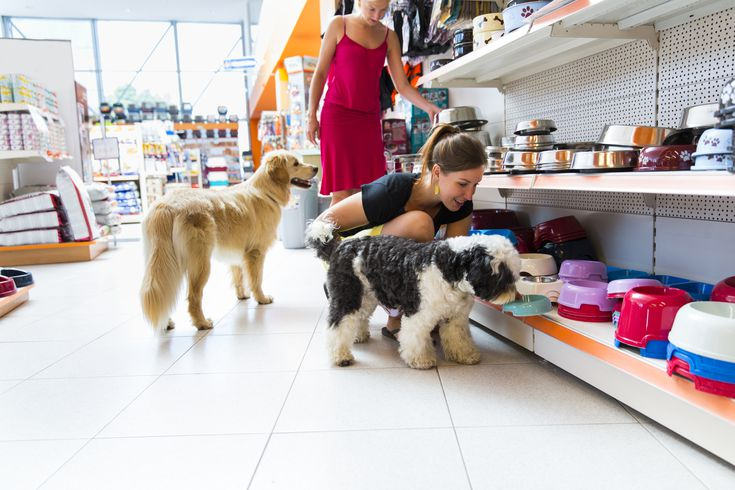 Marketing Strategy For Pet S