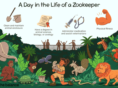 A day in the life of a zookeeper: Clean and maintain animal enclosure, Have a degree in animal science, biology, or zoology, Administer medication and assist veterinarians, Physical fitness