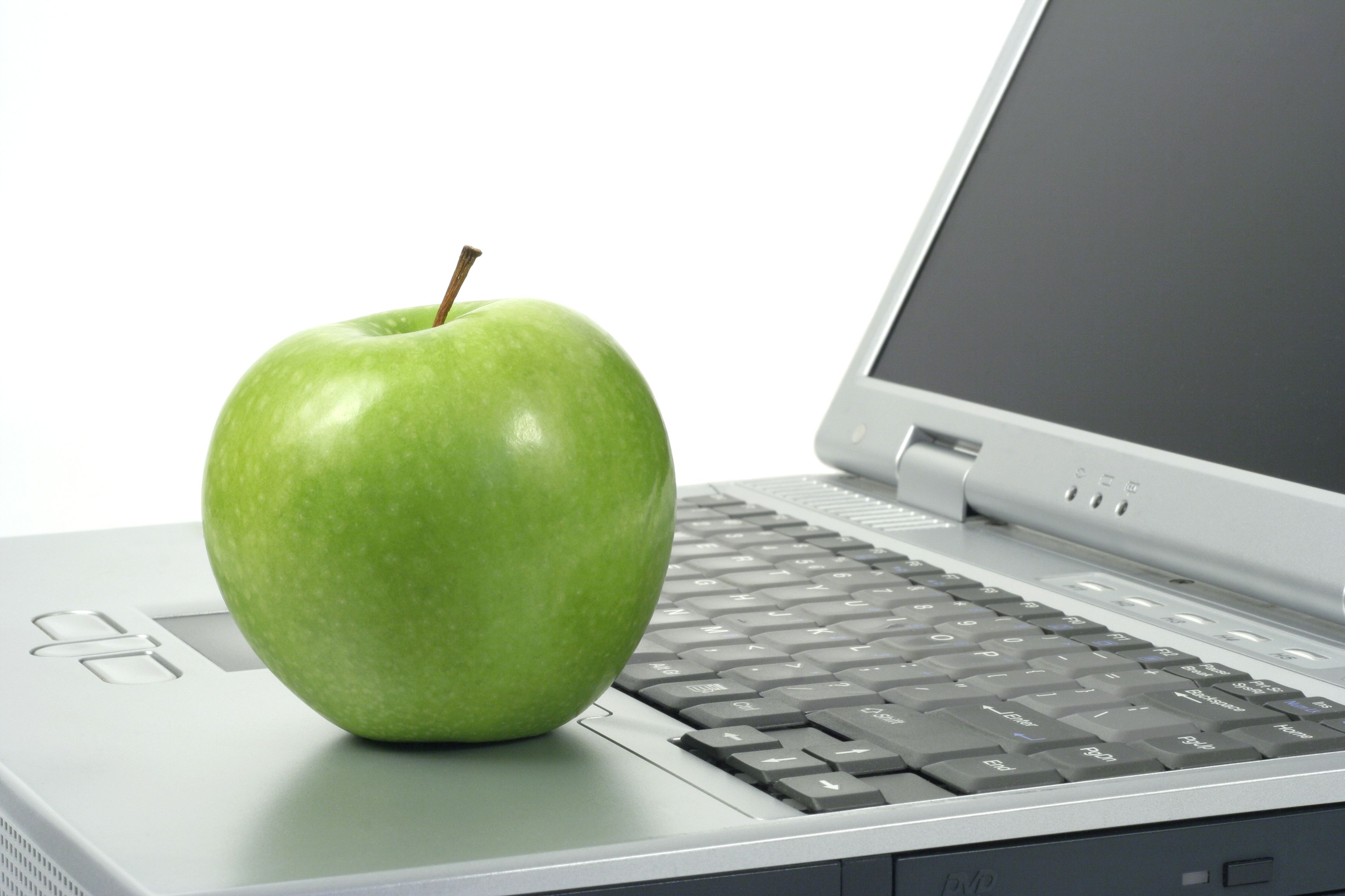 Different Types of Online Jobs for Teachers