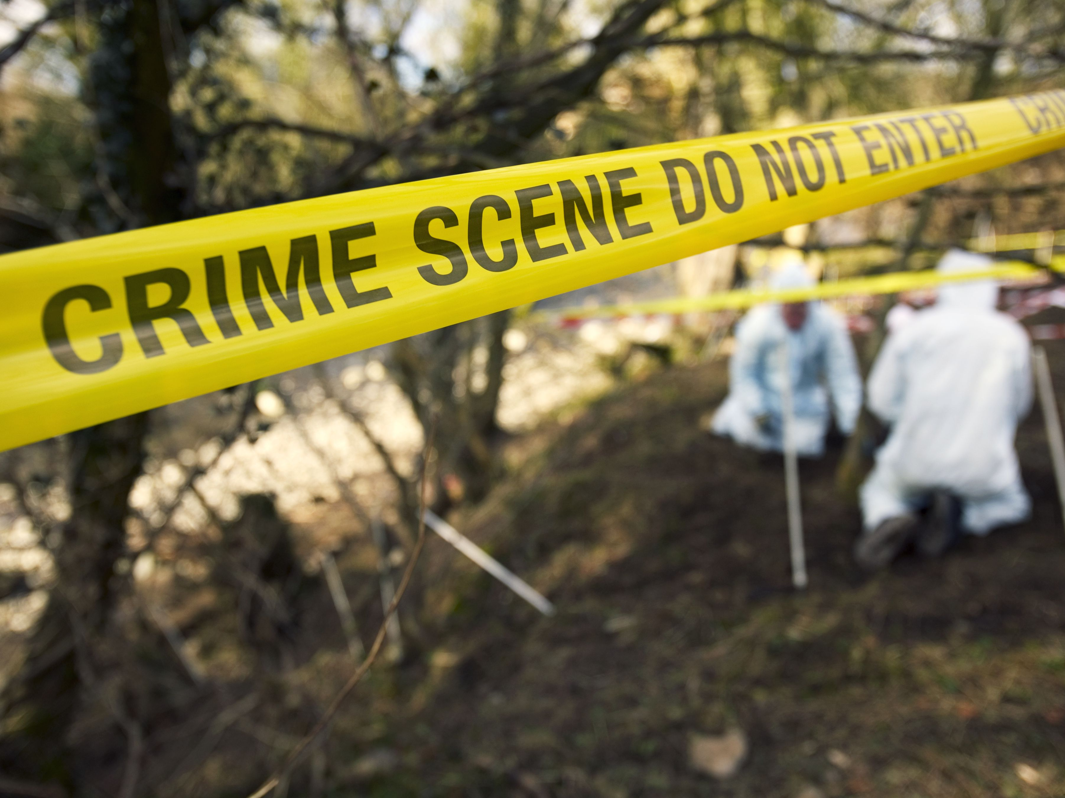 Do You Need A Resume For Criminology Jobs