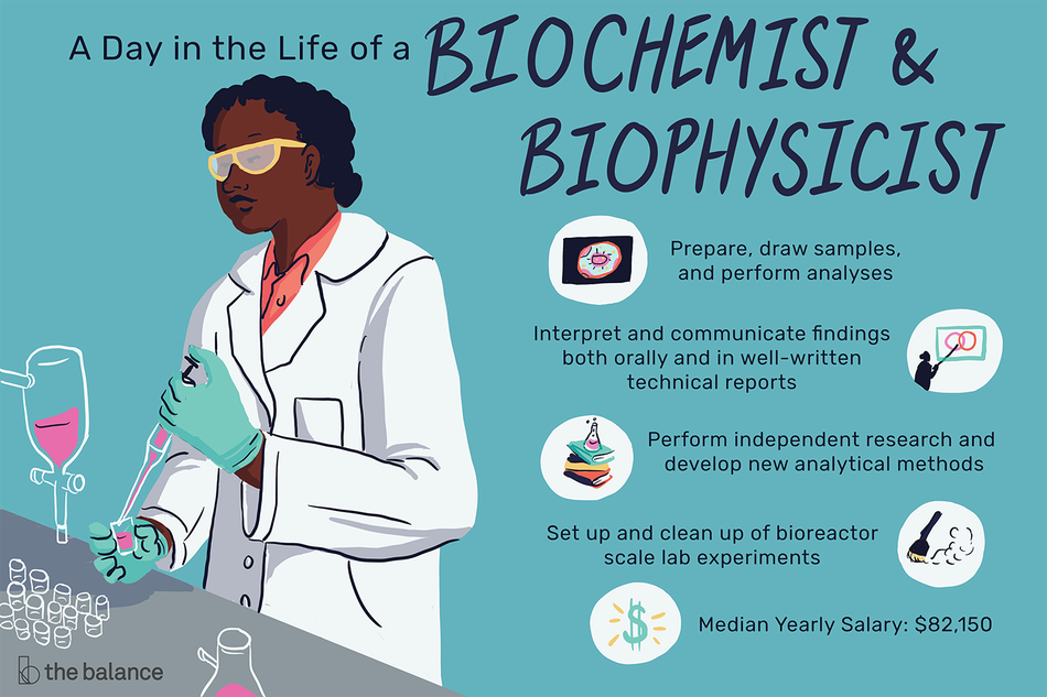 A Day in the Life of a Biochemist