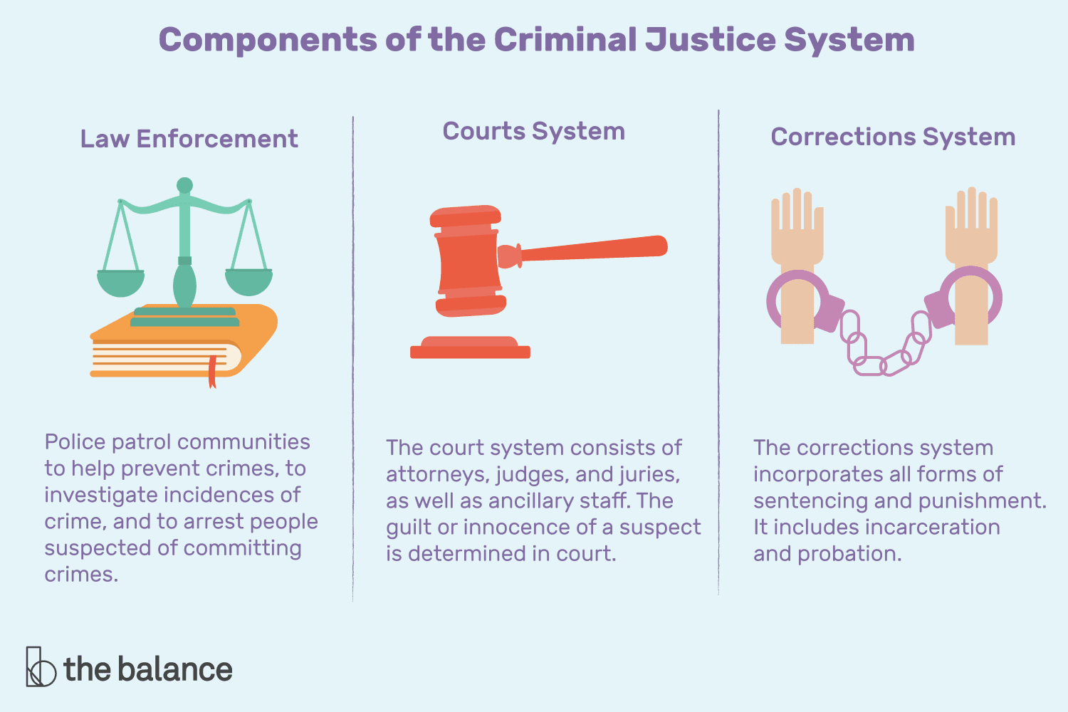The components of the criminal justice system