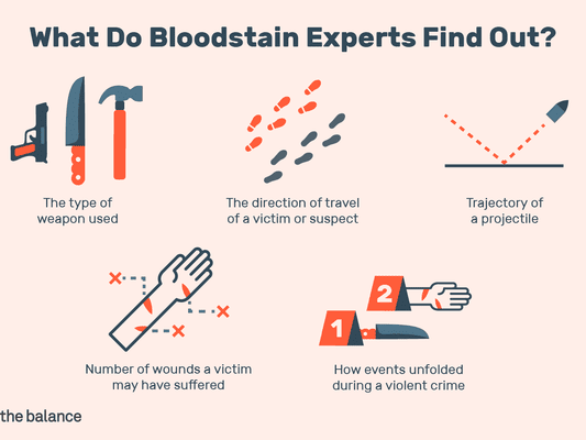 Illustration of what bloodstain experts find out
