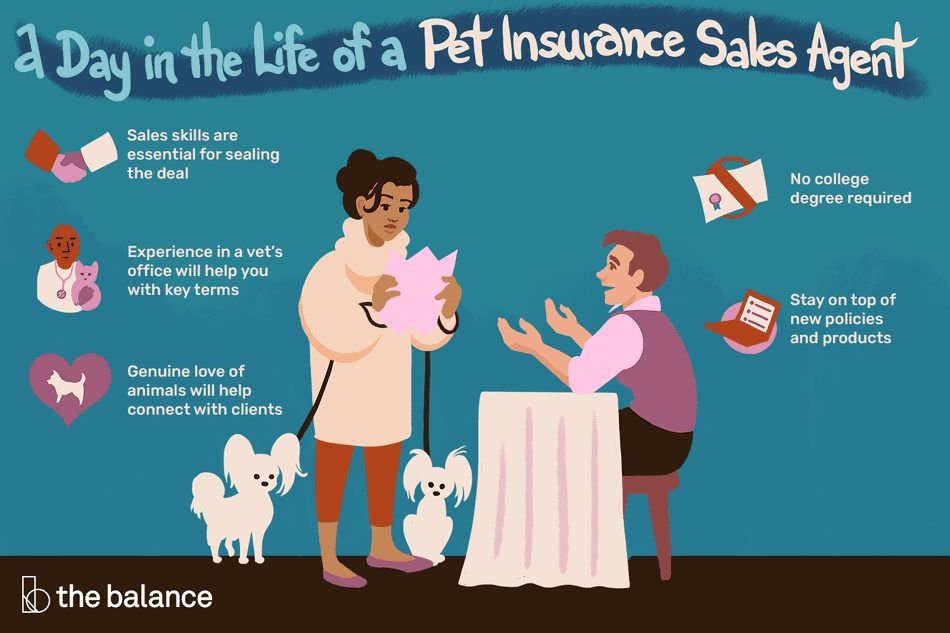 What Does a Pet Insurance Sales Agent Do?