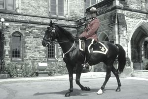 "Canadian ""Mountie"""