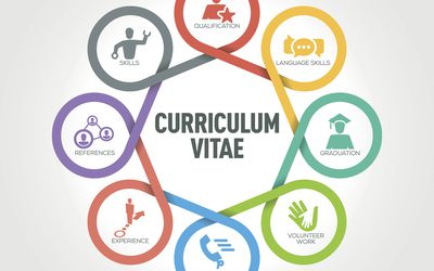 curriculum vitae infographic with 8 steps parts options