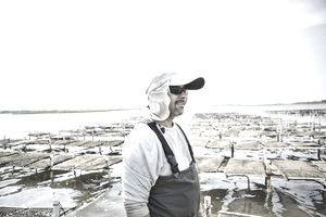 Oyster Fisherman Standing in Water in Waders