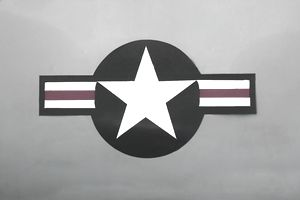United States Air Force Emblem.