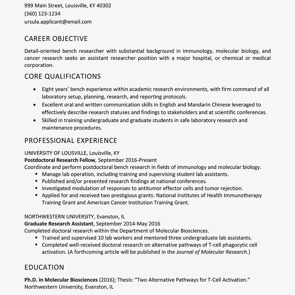 curriculum vitae for thesis sample