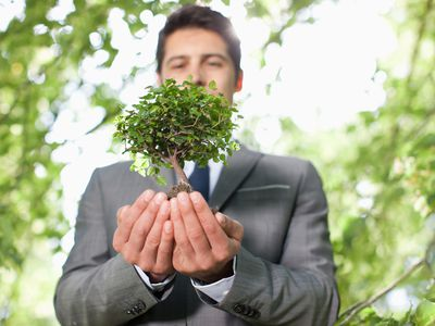 Man holding a small tree in his hands