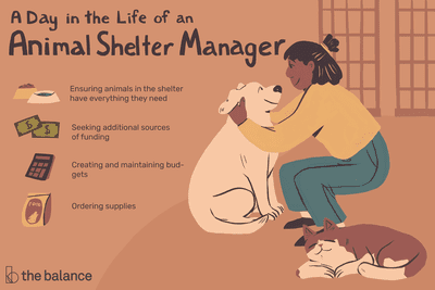 A day in the life of an animal shelter manager: Ensuring animals in the shelter have everything they need, seeking additional sources of funding, creating and maintaining budgets, ordering supplies