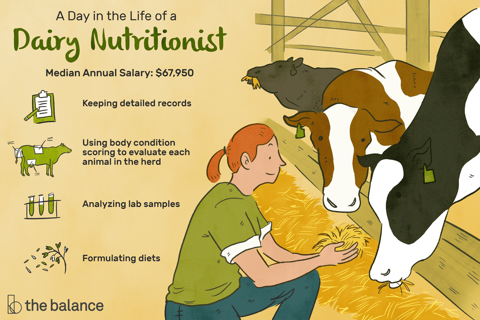 Dairy Nutritionist Job Description: Salary, Skills, & More