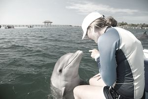 a young woman sitting with a dolphin during an animal internship