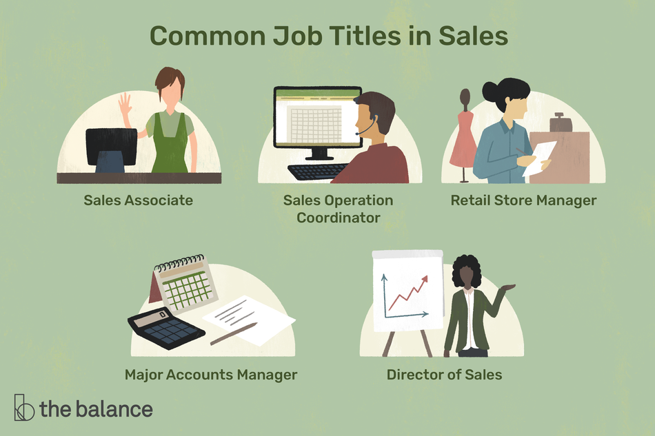 "This illustration includes common job titles in sales including ""Sales Associate,"" ""Sales Operation Coordinator,"" ""Retail Store Manager,"" ""Major Accounts Manager,"" and ""Director of Sales."""