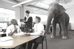 Resistance to change is the elephant in the room when you ask employees to change.