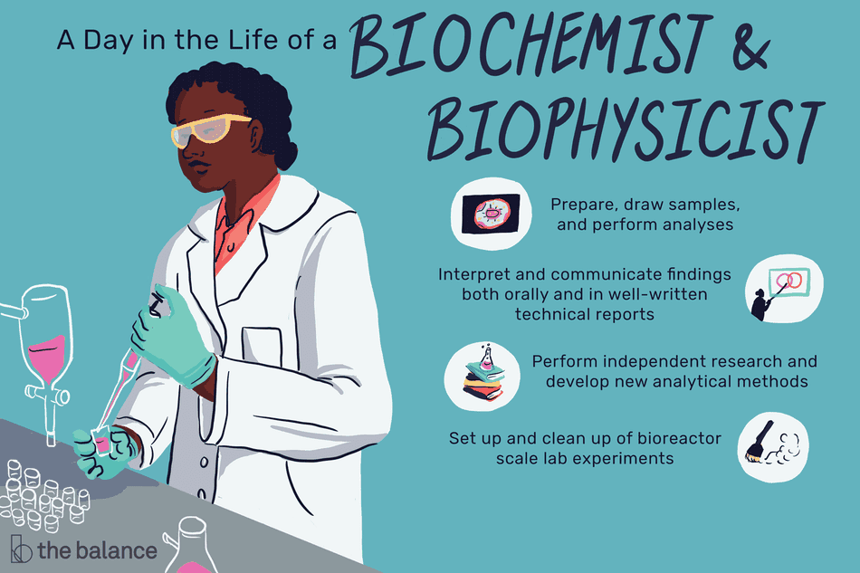 A day in the life of a biochemists and biophysicists: Prepare, draw samples, and perform analyses; interpret and communicate findings both orally and in well-written technical reports; perform independent research and develop new analytical methods; set up and clean up of bioreactor scale lab experiments