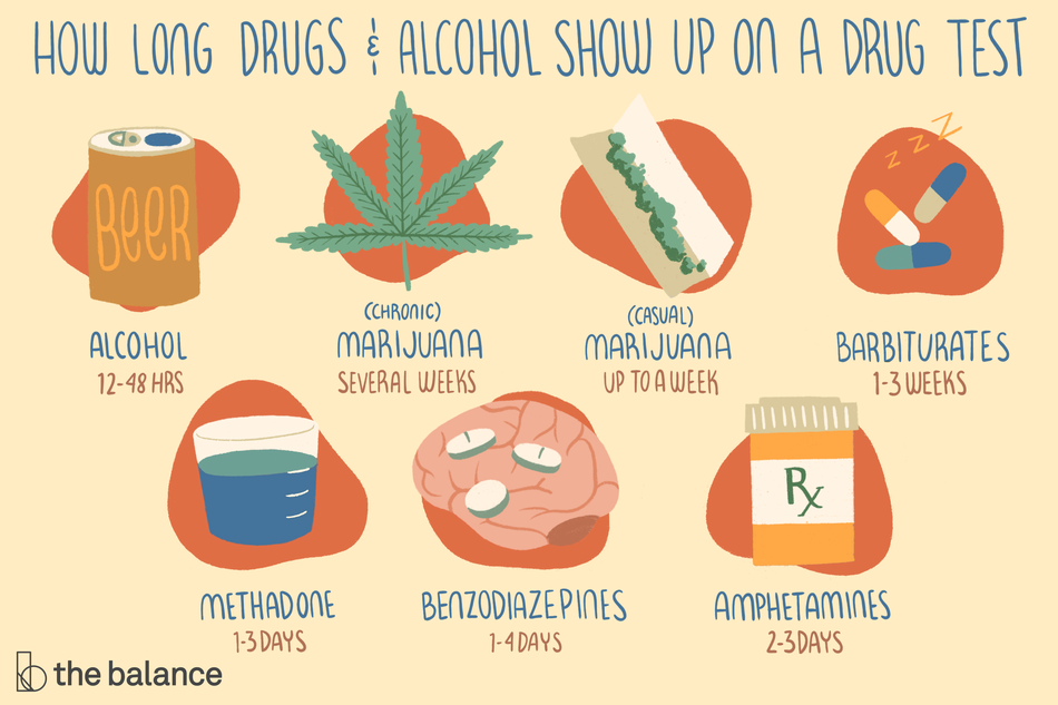 How long drugs and alcohol show up on a drug test–Beer: 12-48 hours, Chronic use of marijuana: Several weeks, Casual marijuana use: Up to a week, Barbiturates: 1-3 weeks, methadone: 1-3 days, benzodiazepines: 1-4 days, amphetamines: 2-3 days