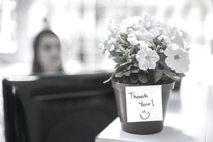 Gift of a potted plant with thank you note on office table