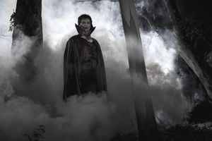 Dracula in the forest